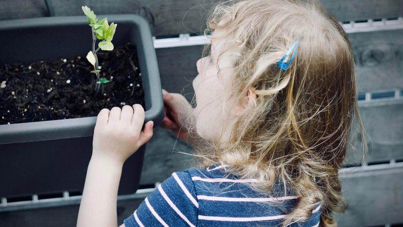 fille plante - super babysitter la Réunion